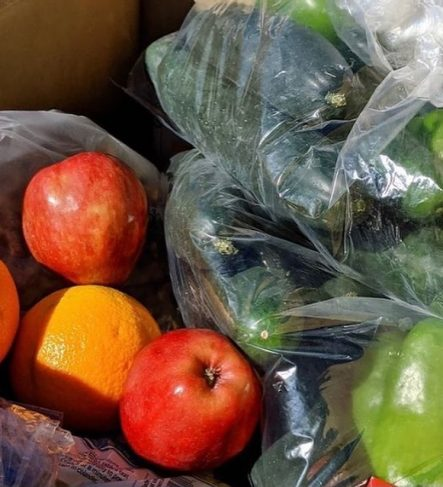 bags of fresh produce close up